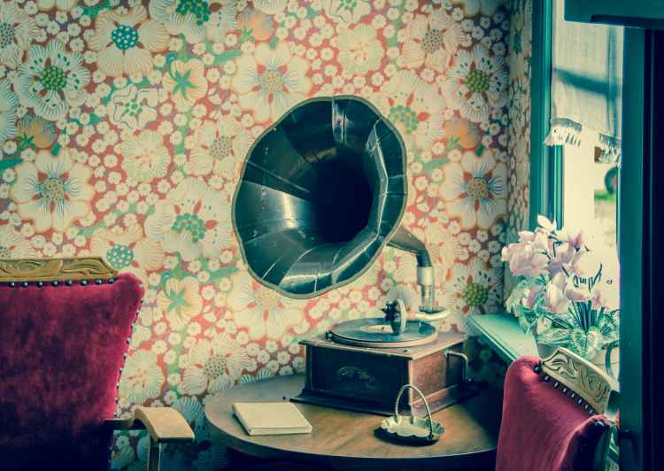 brown and black gramophone